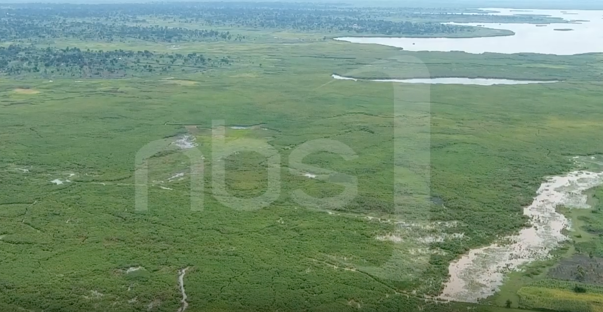 In Eastern Uganda, a New Solar-Powered Irrigation Project Helps Farmers Save Wetlands