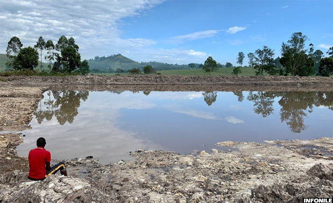Restored wetland in Bushenyi, Uganda to support agriculture, fish farming