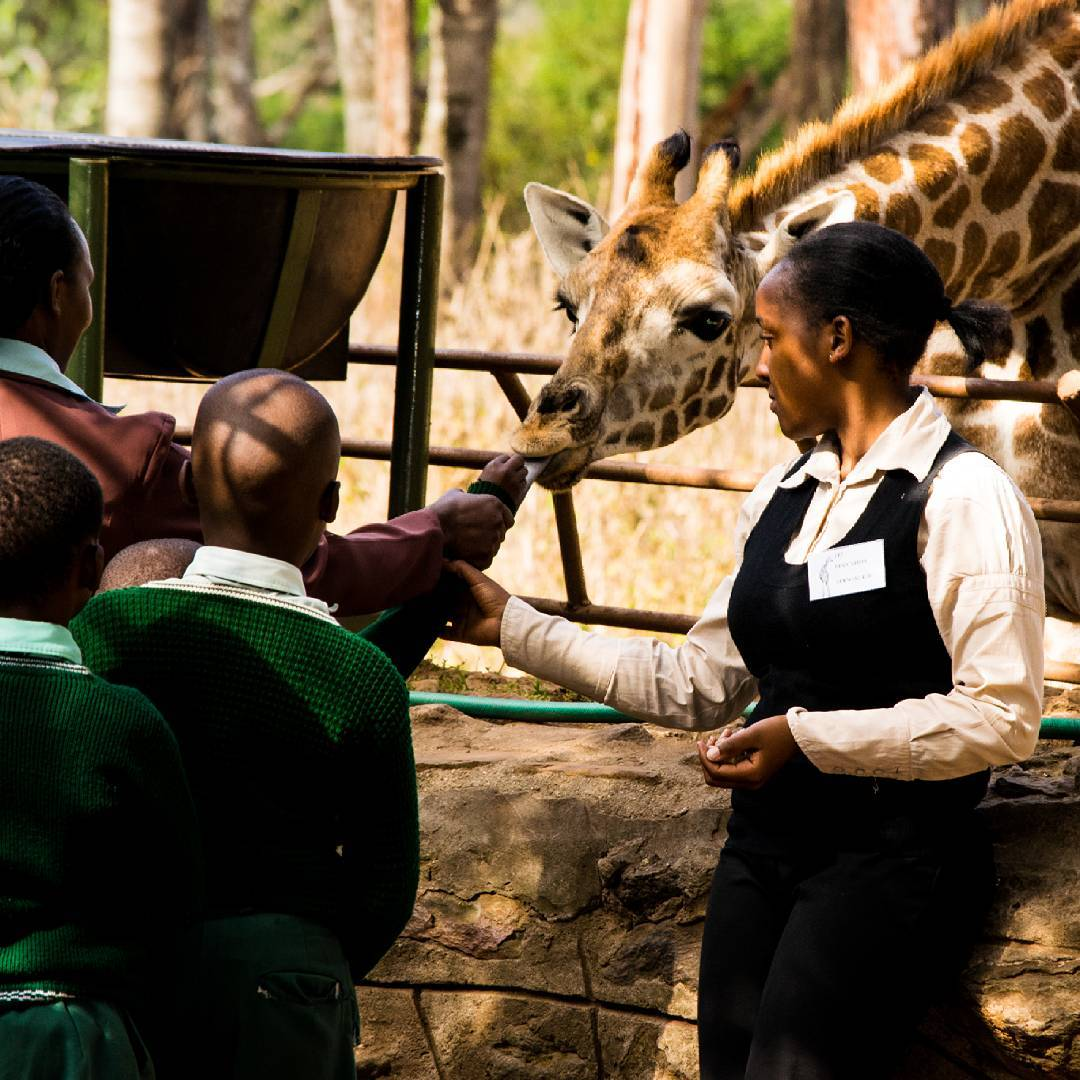 Kenyan school children come to learn about conservation.